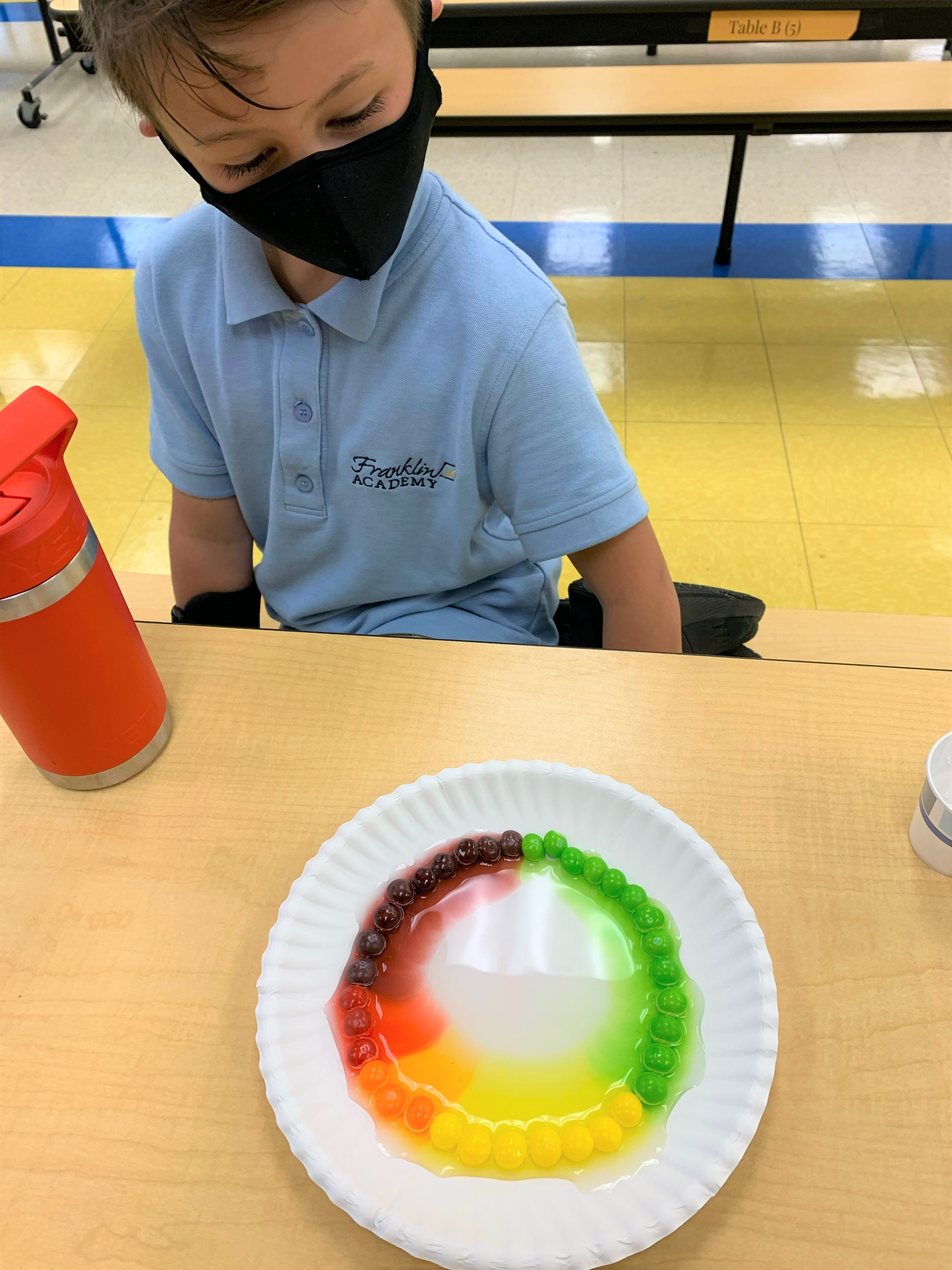 Skittles Rainbow science project Image number 1